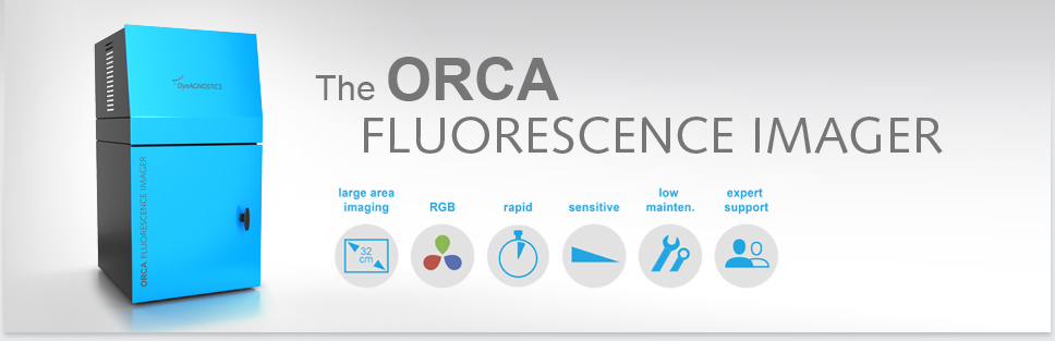 Header ORCA Fluorescence Imager: Large imaging area, RGB fluorescence, Coomassie