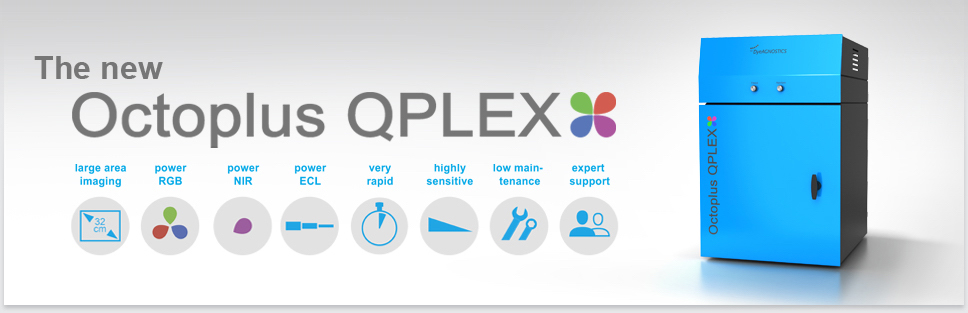 Header Image Octoplus QPLEX: Many samples Western Blot and Gel Doc Power Imager including NIR Fluorescence and Chemiluminescence Large Area Detection