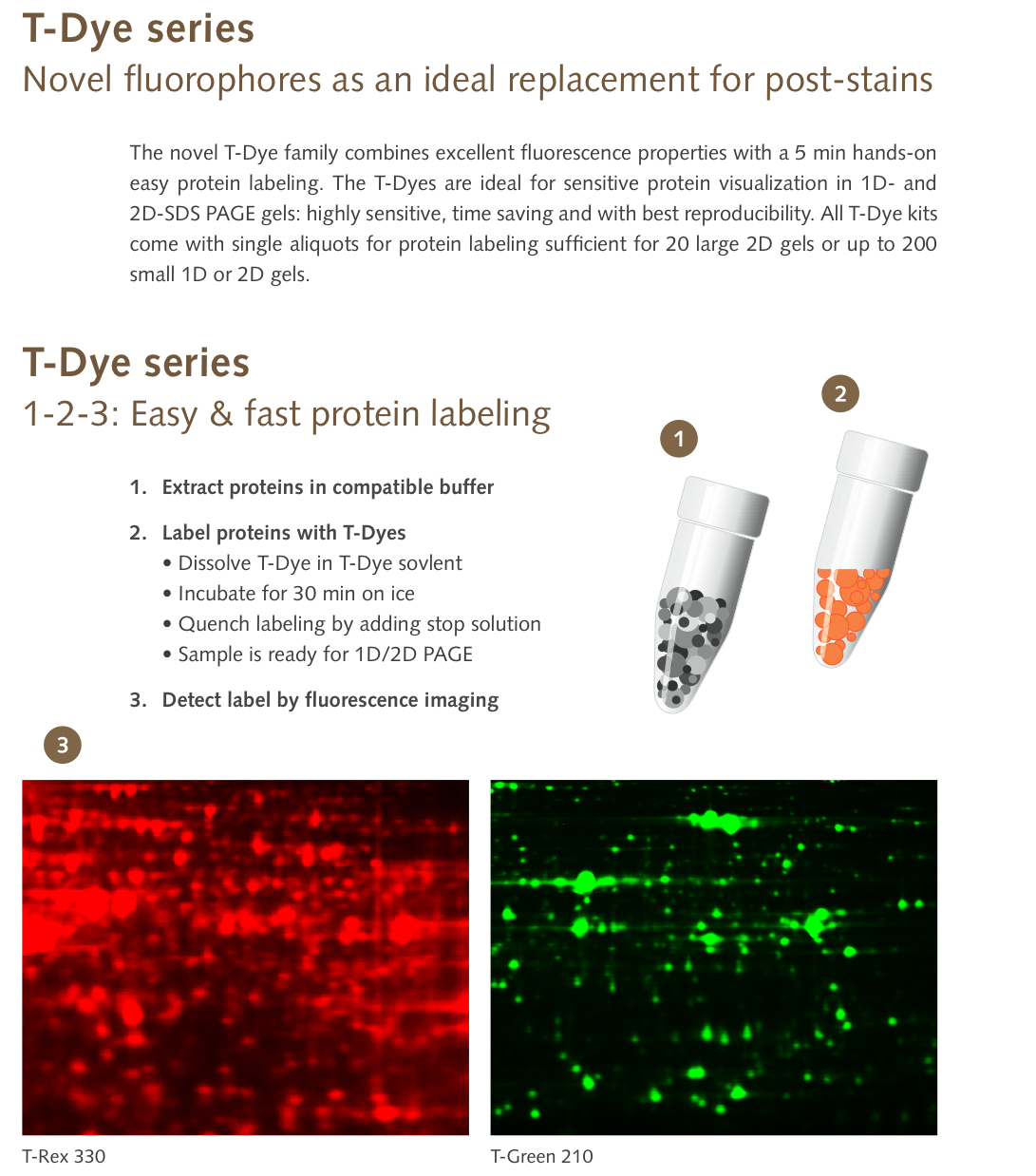 New T-Dye Protein Labeling Kits