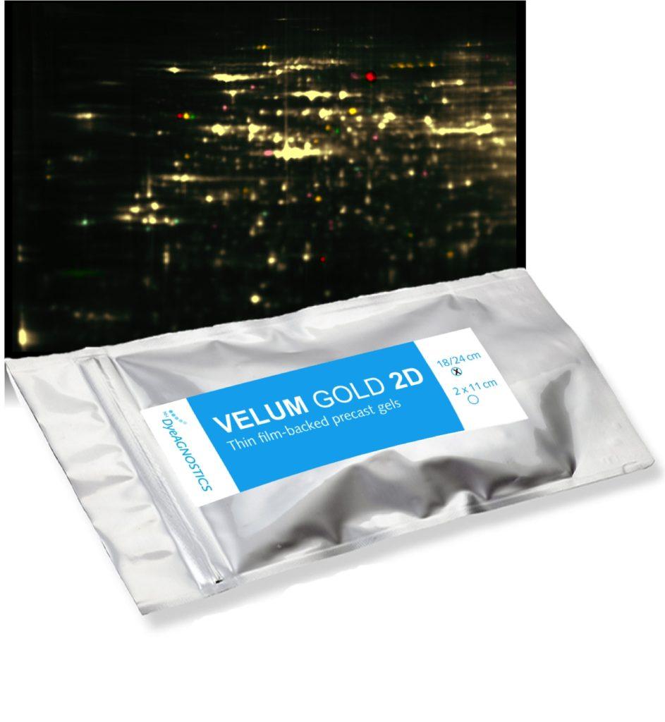Image VELUM GOLD 2D Precast Gels