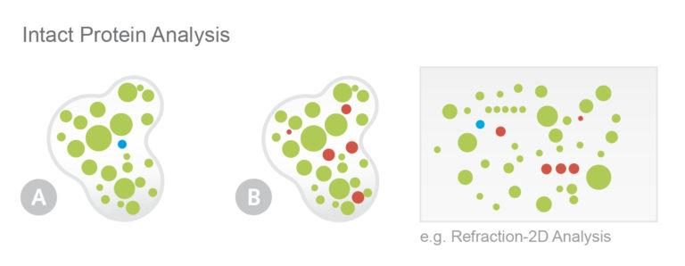 Abbildung NHD Protein Services Bespiel Differentielle Proteinanalyse von intakten Proteinen