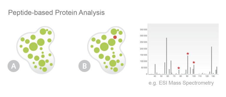 Piktogramm NHD Protein Services Shot Gun MS